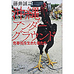 Okinawa_hujii